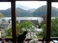 The view of Loch Linnhe from the lounge at Tom-na-Creige. Click for bigger picture.